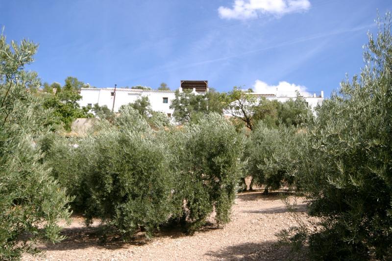 La verdadera España. Tranquilidad entre un mar de olivos que mira sobre el lago Iznajar