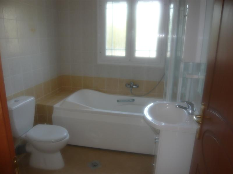 The modern bathroom with WC, bath and power shower