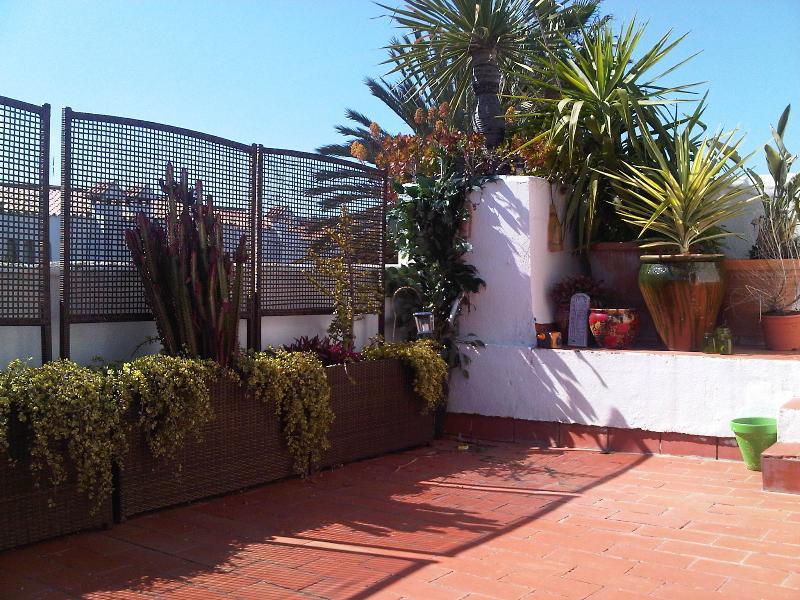 Roof top garden area