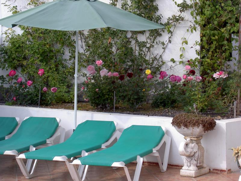 Sunbeds by rose garden and your own swimming pool