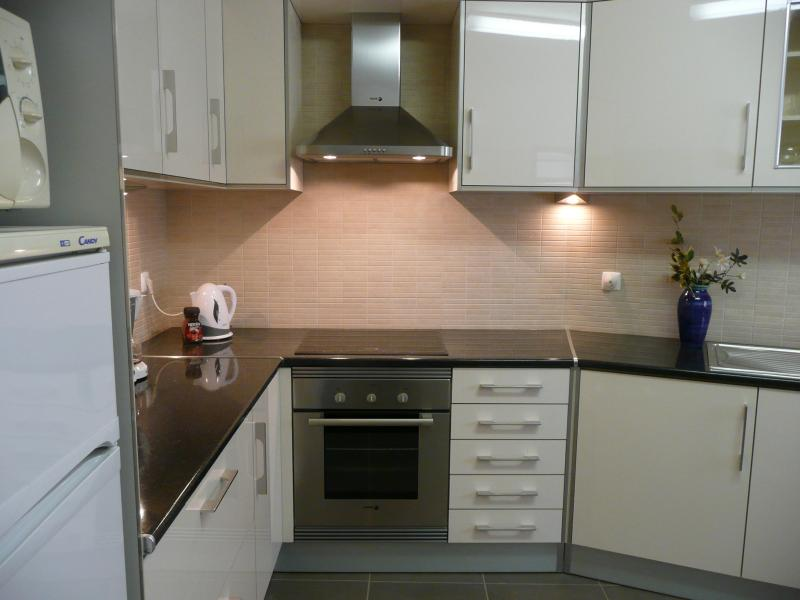 Electric oven and extractor