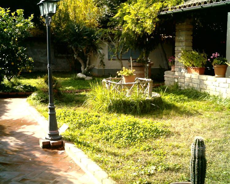 view of garden from the entrance door