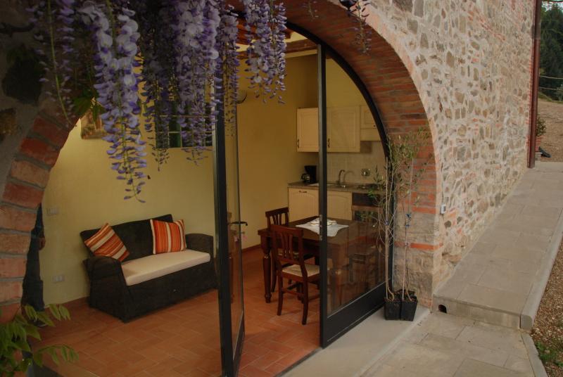 Podere Le Baruti/Castagno, vacation rental in Nusenna