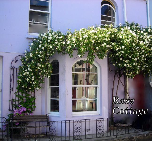 Rose Cottage, Brixham, holiday rental in Brixham