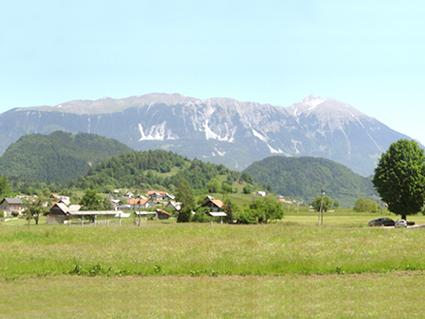 Summer View from the Slovenia Holiday Home