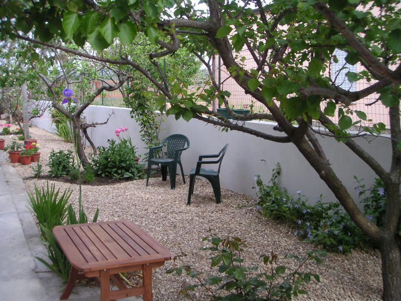 Rear terrace garden