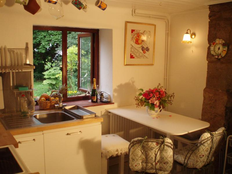 De volledig ingericht huisje keuken kijkt uit op de grote tuin. Afwasmachine, Nespresso koffiemachine.
