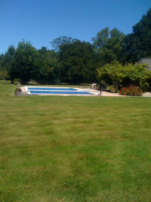 Landscape view with the swimming pool.