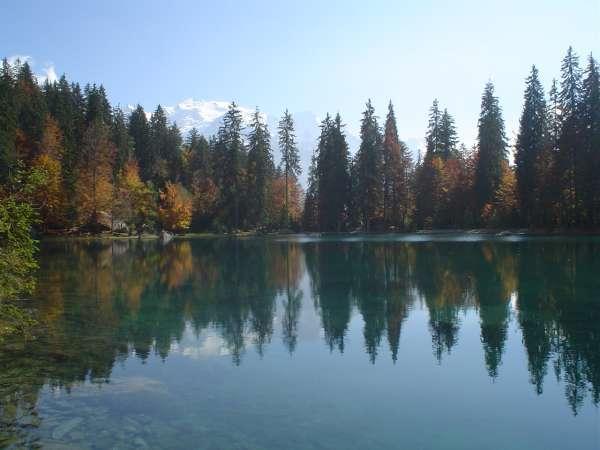Local beauty spot - Lac Vert