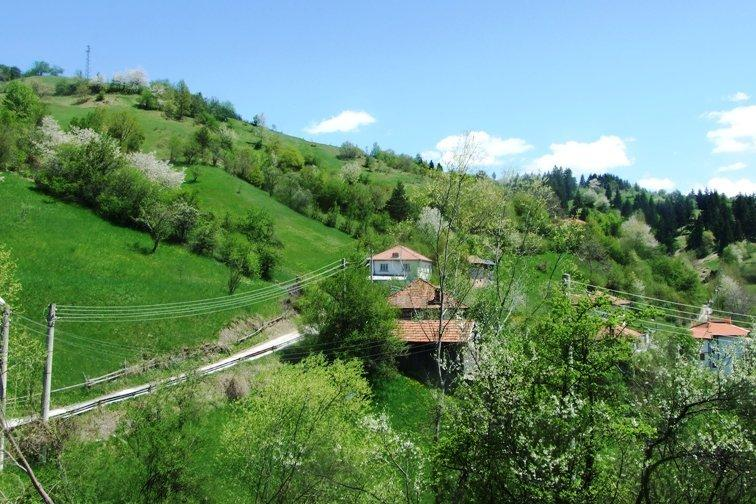 view from front of house over the valley and forests