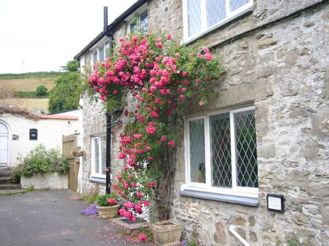 1 Croyde Manor Mews,  charming cottage in  Croyde, holiday rental in Braunton