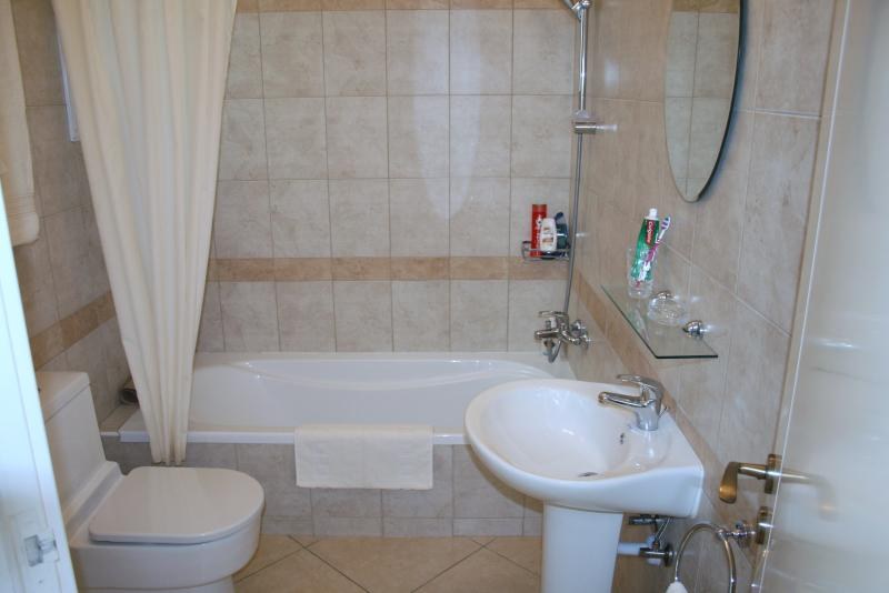 Main Bathroom with Fully Pumped shower