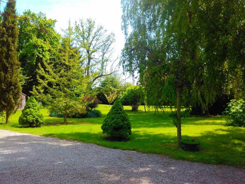 The garden...more like a park!