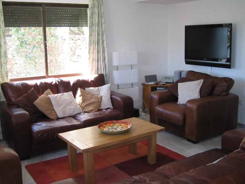 Lounge Area showing leather sofas and plasma TV