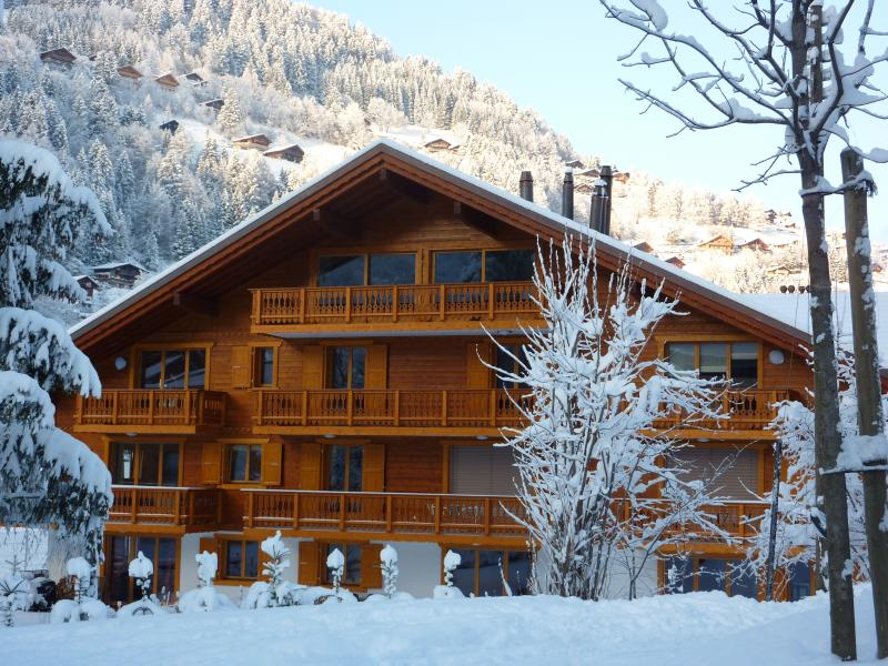 Chalet 'Les Amis', holiday rental in Canton of Valais