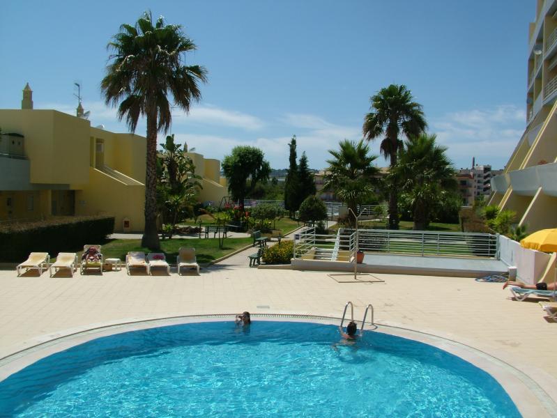 Swimmimg Pool and Garden