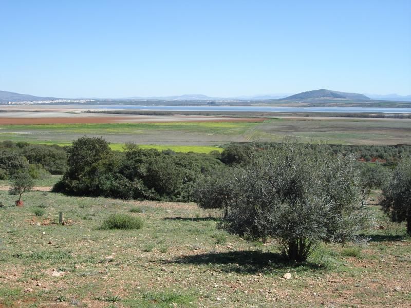 The beautiful landscape at Fuente de Piedra, where Flamingos can be seen.