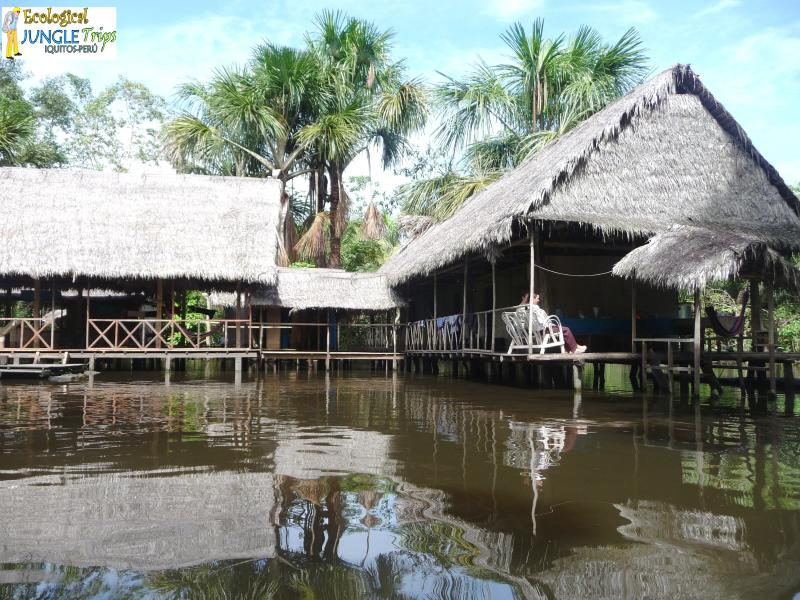 Notre jungle amazonienne Lodge