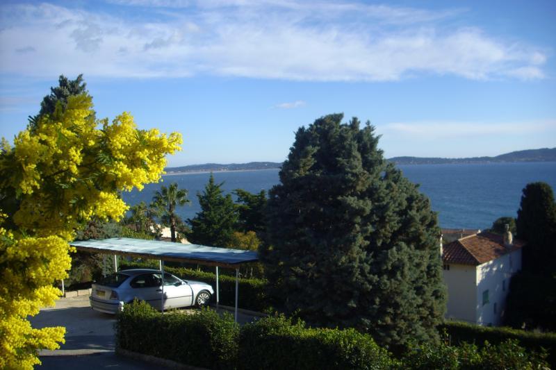 F3 RDJ DE VILLA VUE MER 180°, holiday rental in Carqueiranne