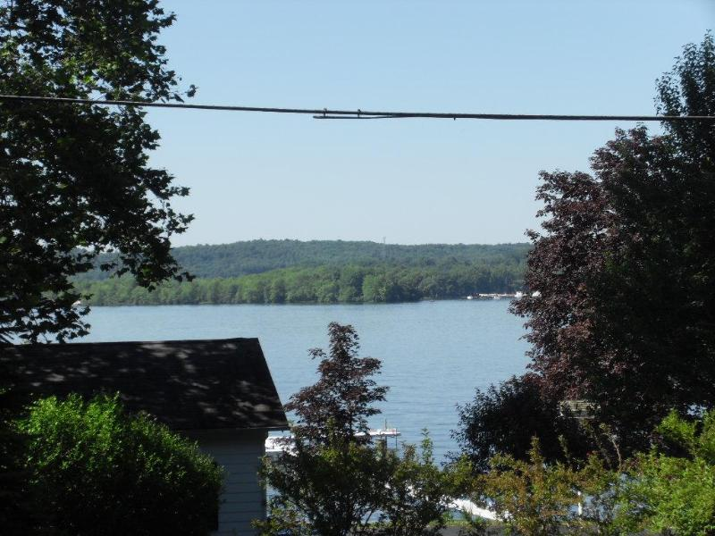View from my cottage. Lake is directly across the street