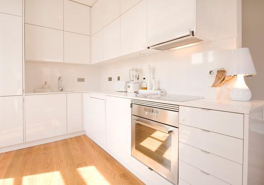 immaculate hyper modern open kitchen