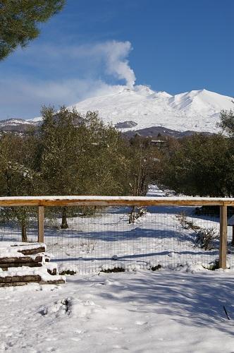 Etna In Winter