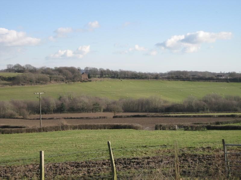 Views of the farmland