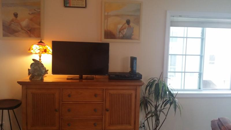 Flat screen - cable and internet