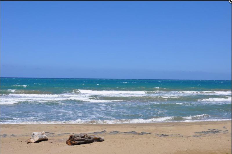 Beach view (3)