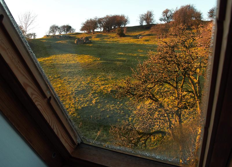 View from the bathroom. Brush your teeth and watch buzzards at the same time.