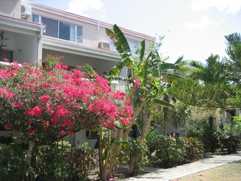 Villa Dix from poolside