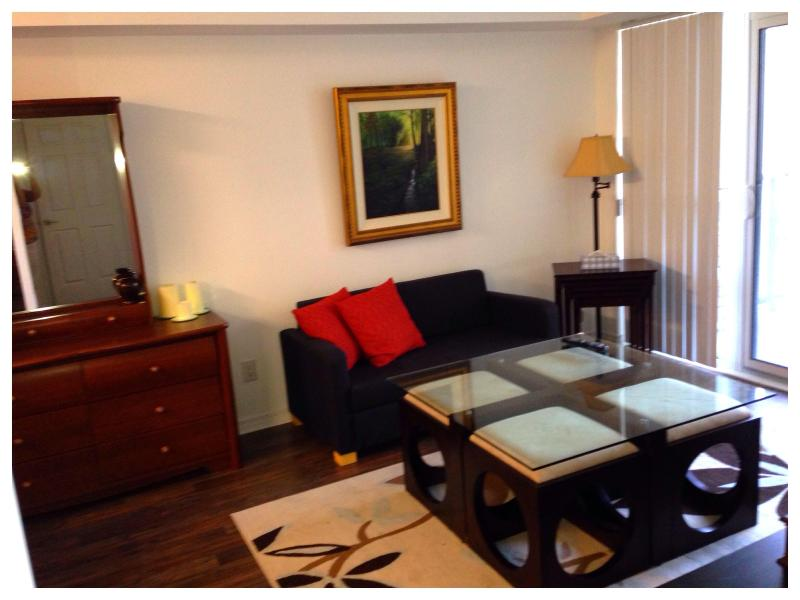 Living Room Coffee Table which also doubles as Dining Table (there are four stools under the table)