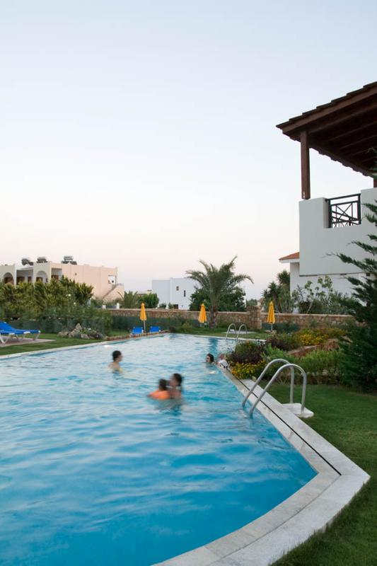 swimming pool with mosaic