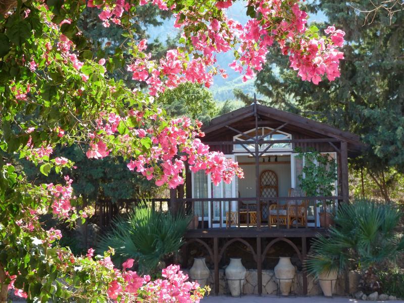 Serendipity, alquiler de vacaciones en Lapta