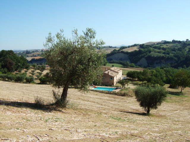 Casa Giulia, holiday rental in Sant'Angelo In Pontano