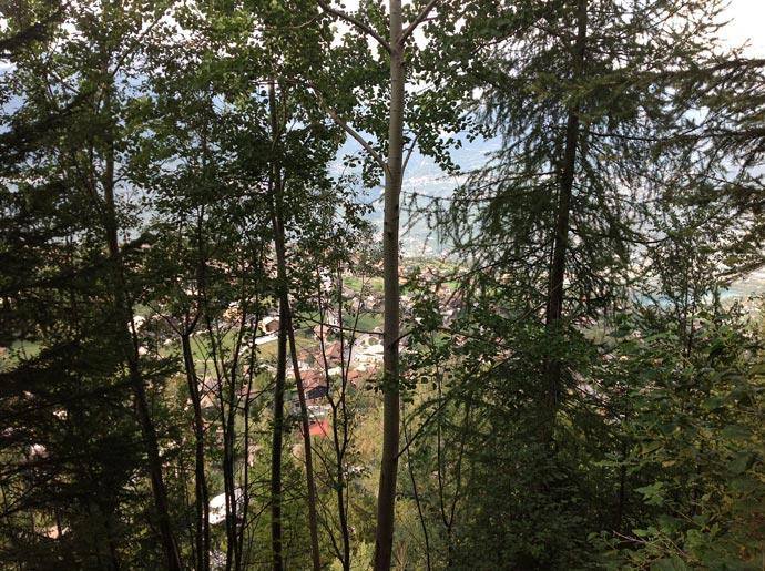 View of Nendaz Through the Trees