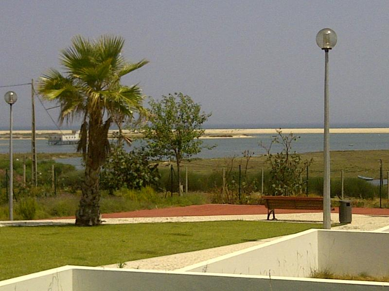 Sea view from Garden