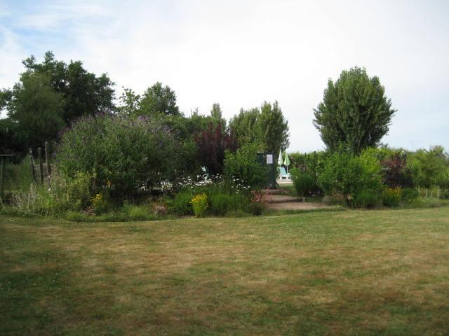 Jardin et entrée de la piscine