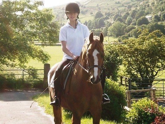 Godetevi a cavallo nella campagna mozzafiata. L'equitazione è disponibile al vero bene Hall