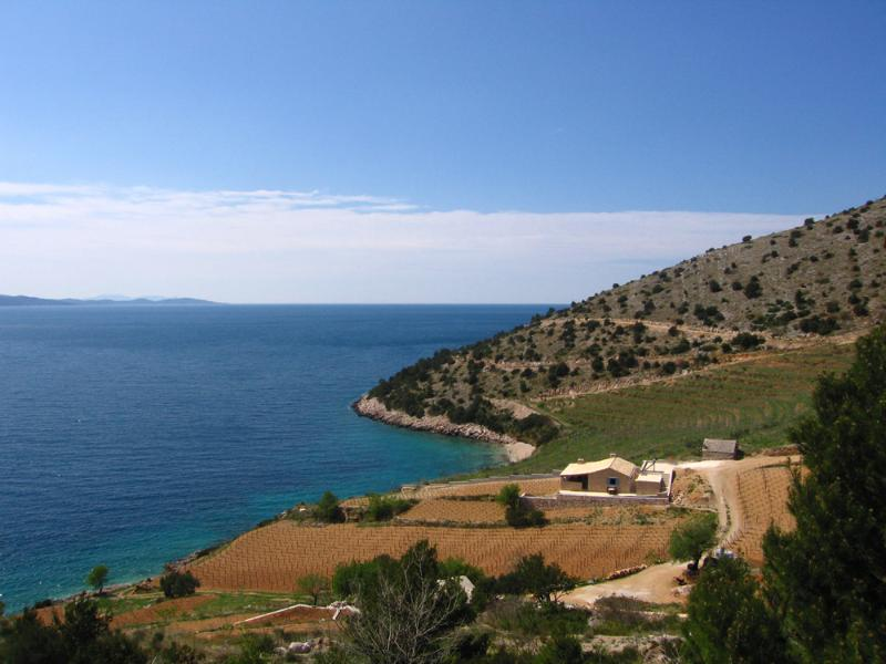 Beachfront Stone Villa Nestled Among Best Vineyards