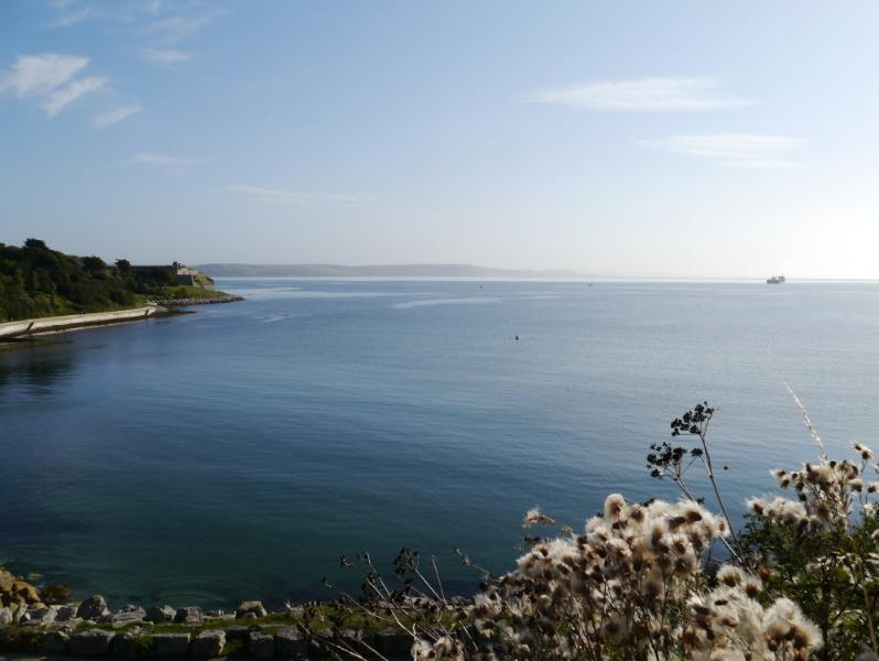 Newtons  Cove