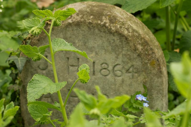 Very quiet neighbours! One of the gravestones from the wood behind the chapel