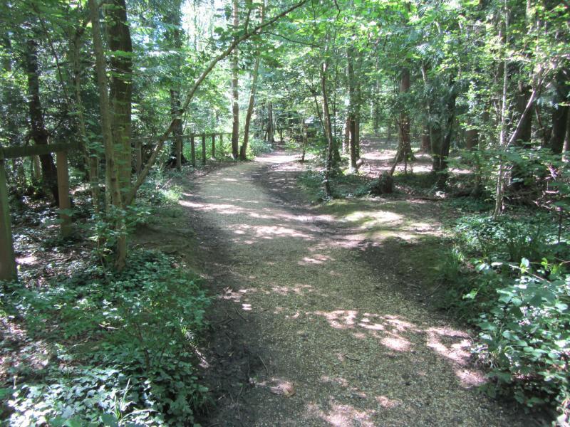 Itchen Valley Woods