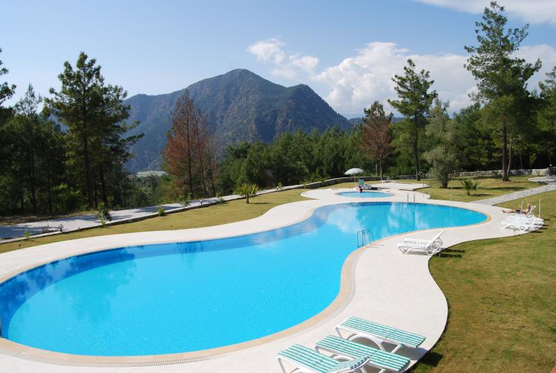 Pool With Lake & Mountain Views