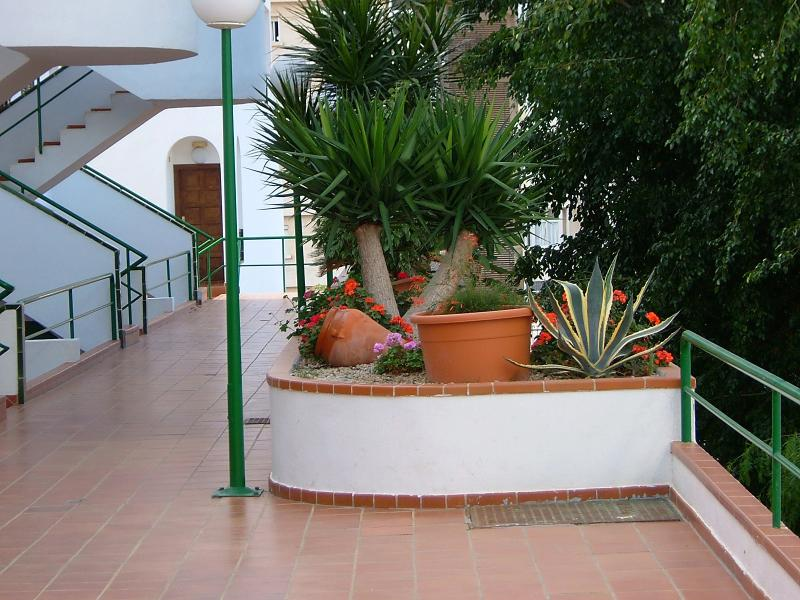 Holiday  Apartment, holiday rental in Valle De San Lorenzo