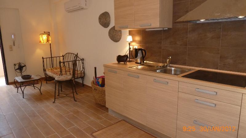 The kitchen in the ground floor