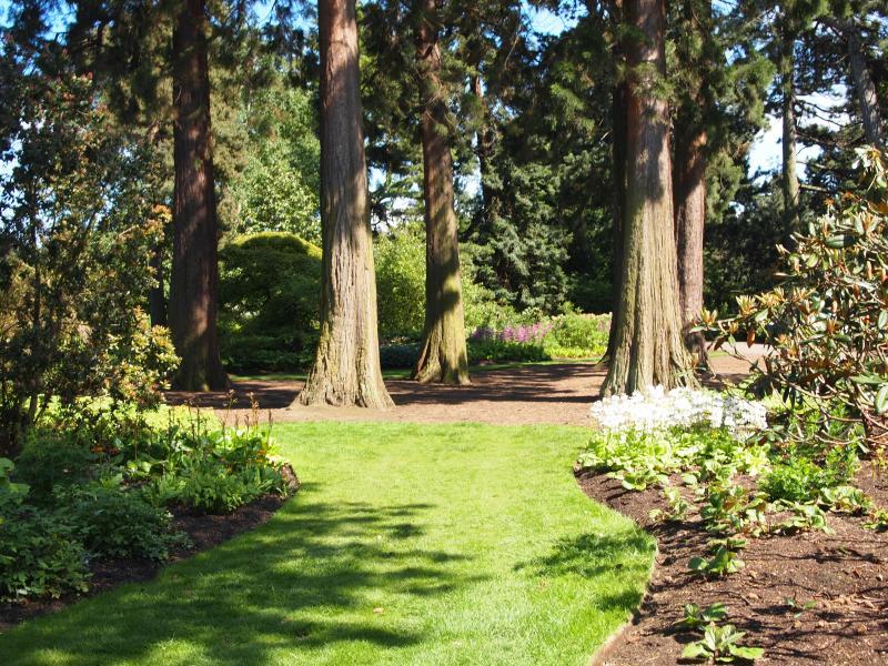 Typical Botanics tree view