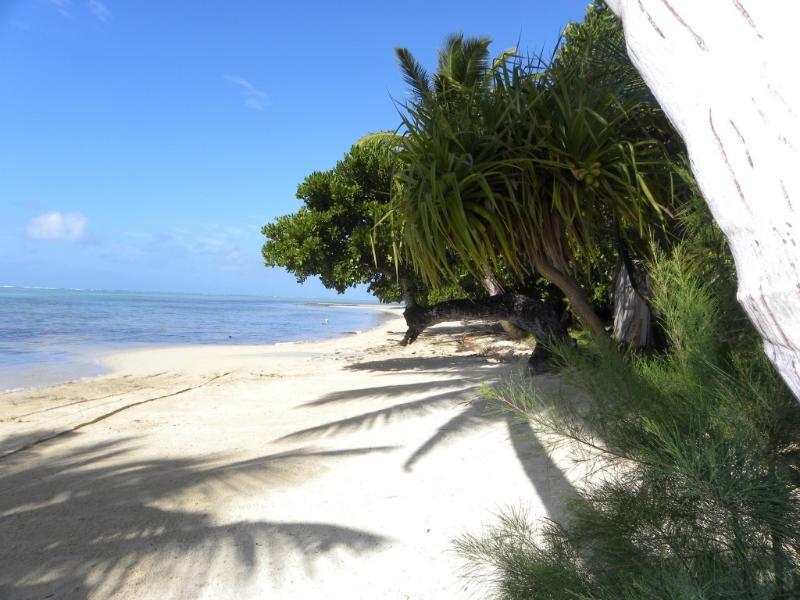 la plage de l'abri-côtier