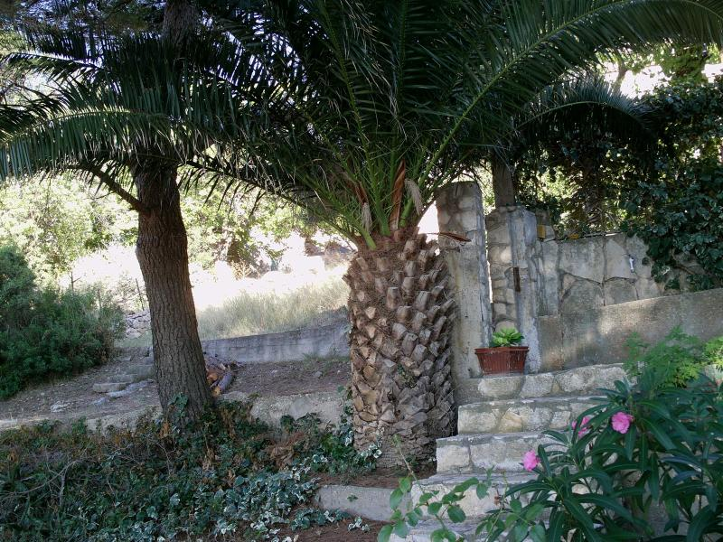 Romantic studio app.in old house ,island Vis, holiday rental in Rukavac