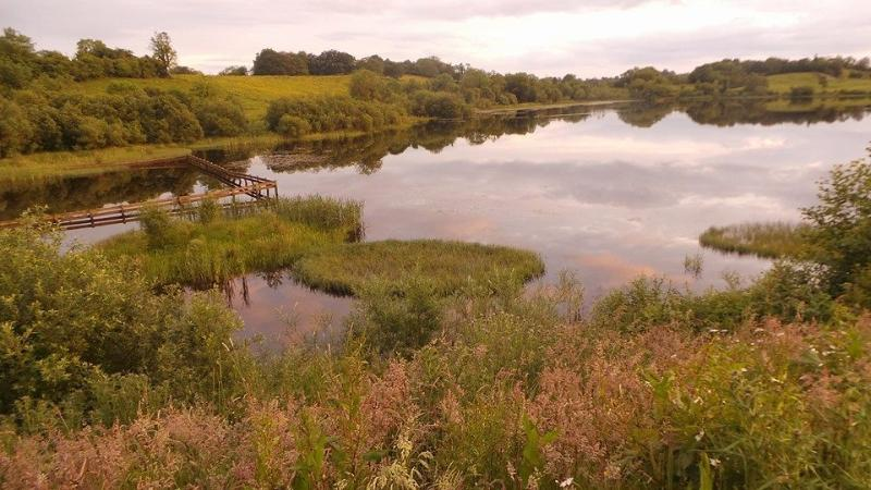 Killyfole lough, local nature reserve, in June